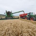 Transavia a investit 5 milioane euro în două noi ferme vegetale