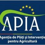 APIA a efectuat în ianuarie plăţi către fermieri în valoare de 3,3 miliarde lei