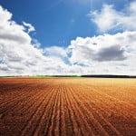 Potențialul agriculturii ecologice în România
