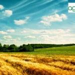 Agricost, cel mai important jucător din agricultura românească