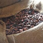 Producătorii de ciocolată, afectaţi de fluctuaţiile majore ale preţului la cacao