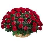 Black Friday: FlorideLux anunţă reduceri de până la 50%