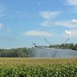 15 studenţi se alătură echipei Monsanto