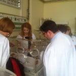 """Maternitatea de la Spitalul """"Sf. Pantelimon"""", modernizată cu 12 milioane de lei"""