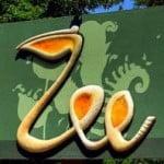 Intrare liberă pentru copii la Grădina Zoologică de 1 iunie