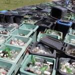 Noi reglementări privind gestionarea ambalajelor și a deșeurilor provenite din ambalaje