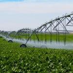 Fonduri suplimentare pentru infrastructura agricolă şi silvică
