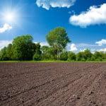 Comunicat MADR privind reducerea normei de venit în domeniul activităţilor agricole