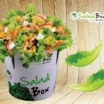Salad Box se deschide în Plaza România