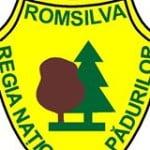 Profit de 169 de milioane de lei pentru Romsilva din concurența licitațiilor