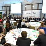 """Cele mai importante probleme din agricultură, discutate la """"Romanian Agribusiness in 2016"""""""