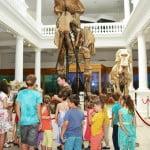 Școala Altfel: Peste 13.000 de elevi au vizitat Muzeul Antipa