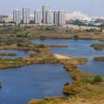 Parcul Natural Văcărești a fost atribuit spre administrare până în 2027