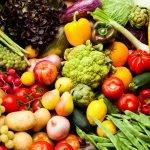 Cooperativa agricolă Ţara Mea susţine producătorii români de legume