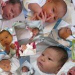 Gynia, servicii de sănătate reproductivă