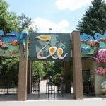 Ziua Internațională a Grădinilor Zoologice, la Zoo București