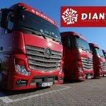 Dianthus, cea mai eficientă companie de transport din România în 2016