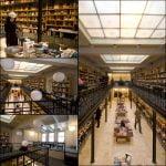 O nouă librărie Cărtureşti, deschisă în Braşov