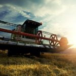 Rentabilitatea agriculturii româneşti: Cu ce probleme se confruntă fermierii?