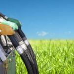 Combustibilul viitorului: Biodieselul