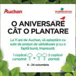 Auchan aniversează 11 ani de la deschiderea primului magazin din România