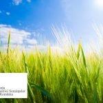AISR promovează utilizarea semințelor certificate în agricultură