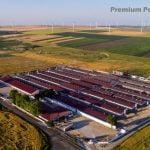 Premium Porc Group, al doilea mare producător de carne din România
