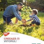 MOL România lansează a 13-a ediție a programului Spații Verzi