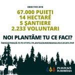 Plantează în România 2018 a început. Când poţi participa la programul de împădurire?