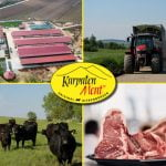 Karpaten Meat a creat la Sibiu o fermă model pentru producătorii autohtoni