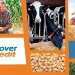 Agricover Credit a finanţat fermierii români cu 1,37 miliarde lei, în 2017