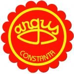 Fabrica de ulei Argus, 70 de ani de activitate. Principalele realizări ale companiei