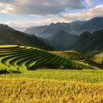 Agricultura montană trebuie să se axeze pe calitate