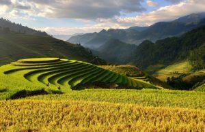 Fonduri pentru fermierii din zona montana