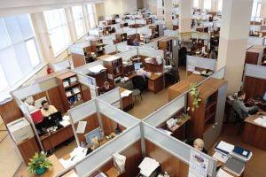 Piata fortei de munca - studiu Deloitte Romania