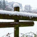 Atenționare meteo de vreme rea. Județele în care va ninge viscolit