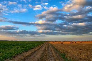 Fonduri europene agricultura 2019