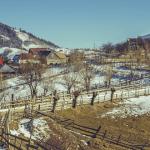 Propunere ANCOM: Poșta Română, furnizor de serviciu universal până la sfârșitul lui 2019