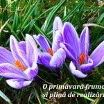 Mesaje business de 1 martie. Felicitări corporate – O primăvară frumoasă!