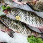 Bursa de Pește Tulcea 2019. Decizia luată de Ministerul Agriculturii