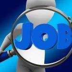 Locuri de muncă: Creşte numărul de aplicări la joburi