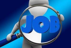 Oferte locuri de munca