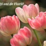 Mesaje de Florii pentru prieteni și familie. Felicitări frumoase pentru cei dragi