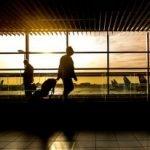 Ajutor de la Comisia Europeană pentru companiile care operează zboruri pe Aeroportul Oradea
