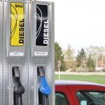 Monitorul Prețurilor Carburanților. Rezultate impresionante în doar două săptămâni de la lansare