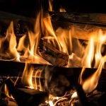 Cât costă un metru cub de lemne pentru foc?