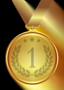 Medalii Romania Turneul de Informatica