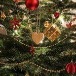 Unde găsești brazi de Crăciun ieftini? Prețuri 2019 pentru toate magazinele