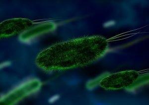 Coronavirus 27 septembrie 2020
