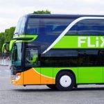 Rezultate FlixMobility 2019: 62 de milioane de pasageri transportați